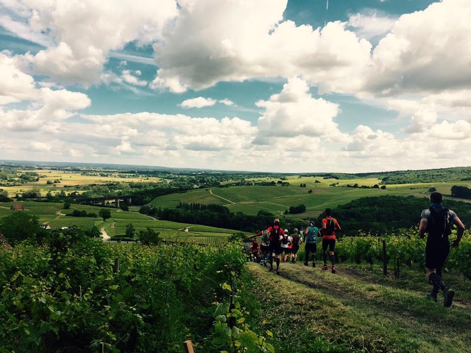 randonnée dans les vignes